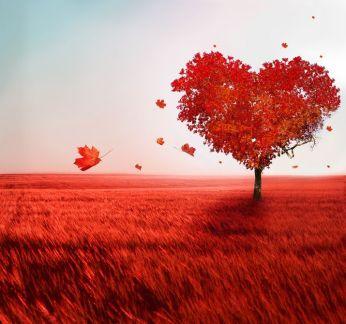 el-arbol-del-amor-love-tree-14-de-febrero-san-valentin-postales-dia-del-amor-y-la-amistad